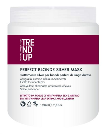 TREND UP MASK PERFECT BLONDE SILVER 1000 ML